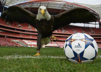 Nuevo balón de la UEFA Champions League | Foto Adidas