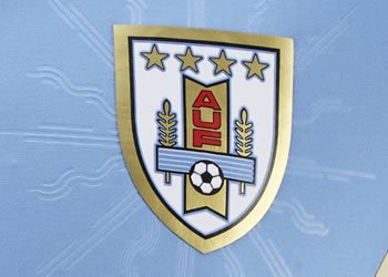 Detalle en el escudo | Foto Puma
