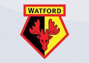Camisetas del Watford (Dryworld)