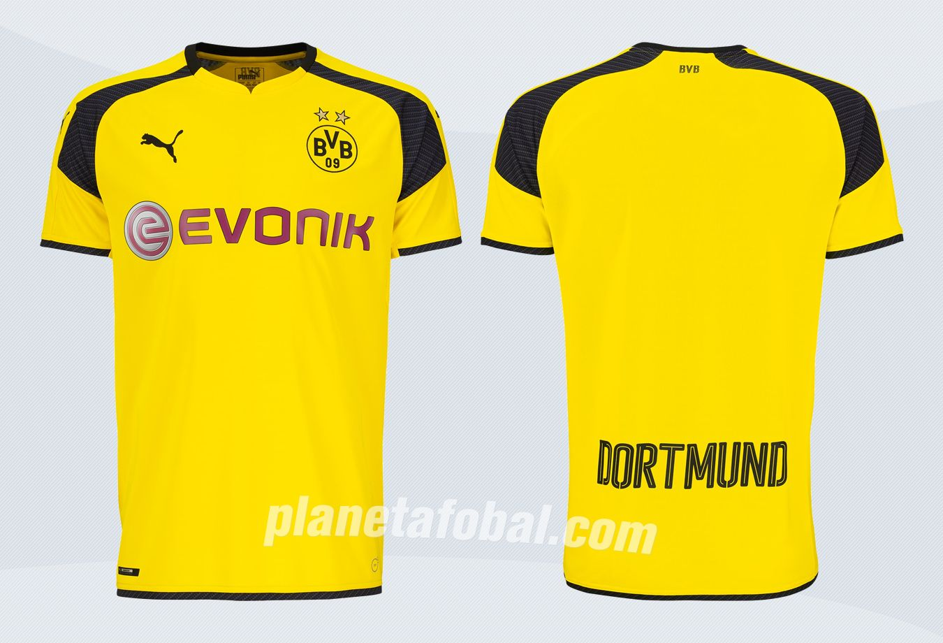 bvb trikot champions league 2019