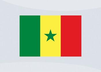 Camisetas de Senegal (Romai)