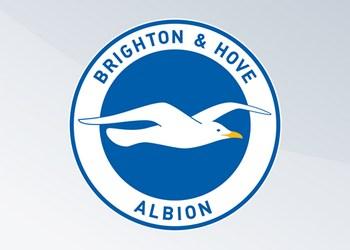 Camisetas del Brighton & Hove Albion (Nike)