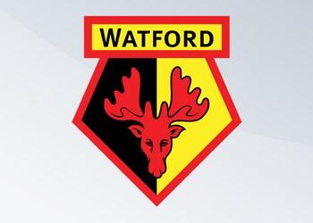 Camisetas del Watford (Adidas)