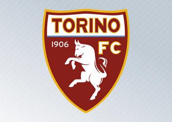 Camisetas del Torino (Kappa)