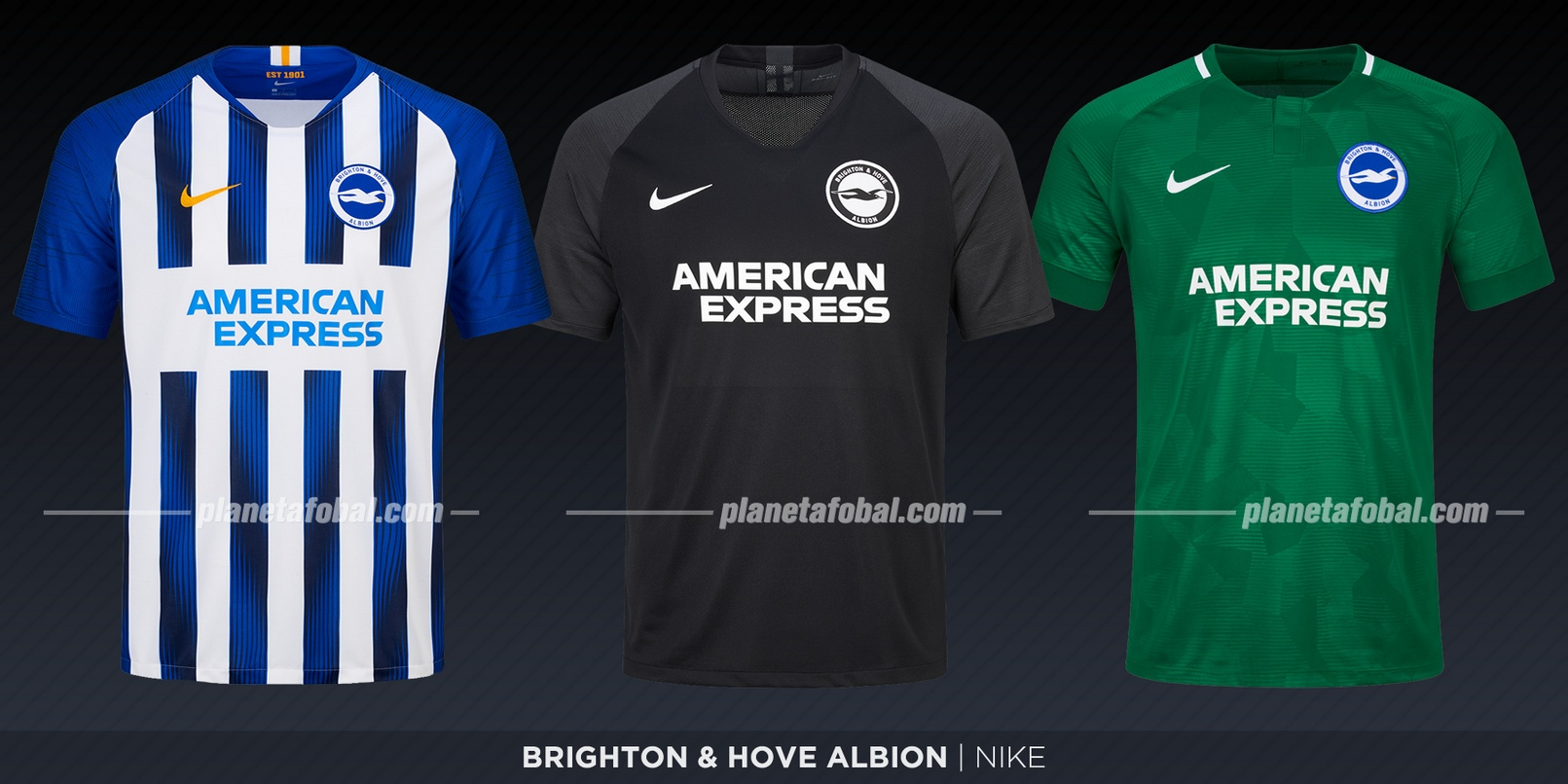 Brighton & Hove Albion (Nike) | Camisetas de la Premier League 2019-2020