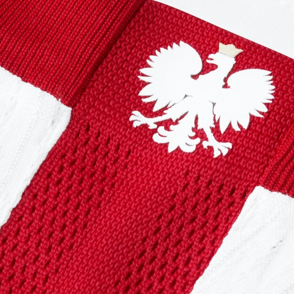 Camiseta Edición Limitada de Polonia 2019 | Imagen Nike