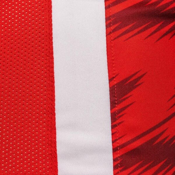 Camiseta Nike del AZ Alkmaar 2020/21 | Imagen Web Oficial