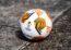 Balón Molten UEFA Europa League 2021/22